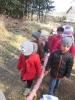 Wiosenny spacer w lesie – grupa Żab